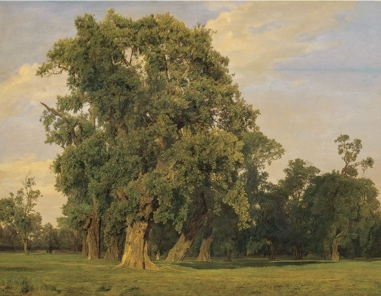 waldmueller tree