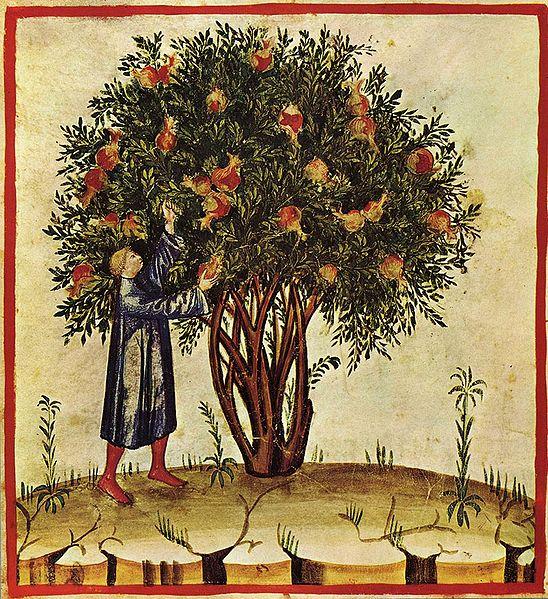 late 14th century