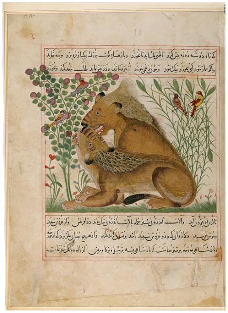 Ibn Bakhtīshū˓, (d. 1058)