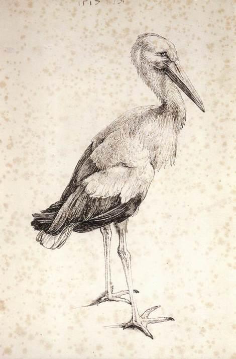 Albrecht Dürer (21 May 1471 – 6 April 1528) German painter, printmaker, engraver, mathematician, and theorist