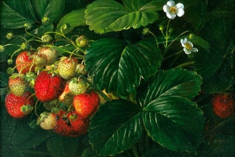 Johan Laurentz Jensen (8 March 1800, Gentofte - 26 March 1856, Copenhagen) wild strawberries