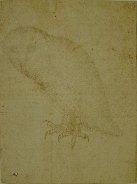 Pisanello_-_Codex_Vallardi_2506
