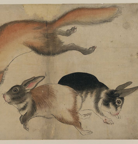 two hares (and fox)