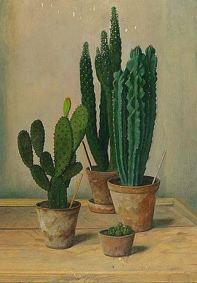 study of cacti
