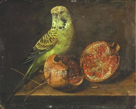 unknown 19th century parakeet pomegranate