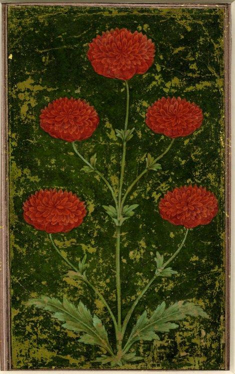 mughal red frame