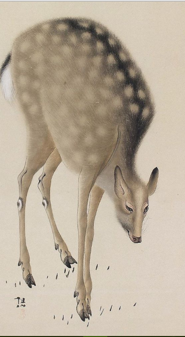 deer-mori-sosen