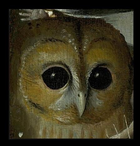 owlface5